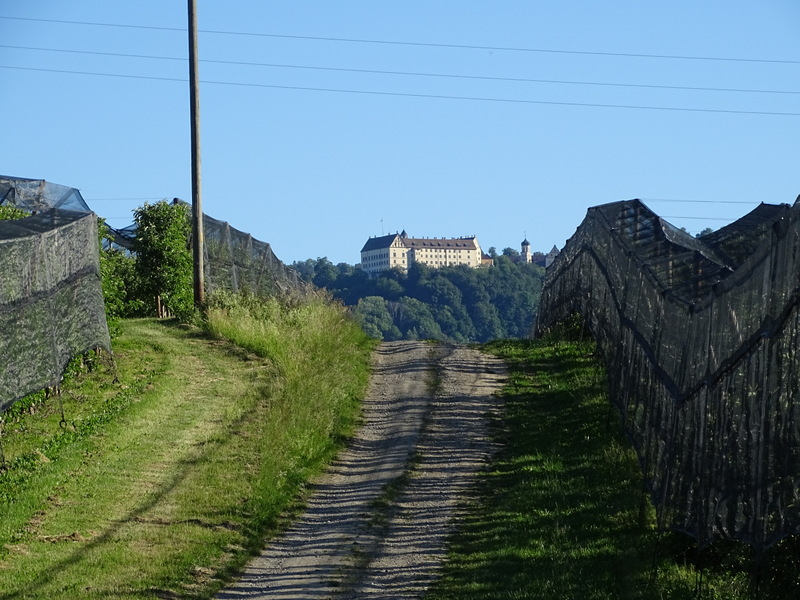 Luftkurort Heiligenberg